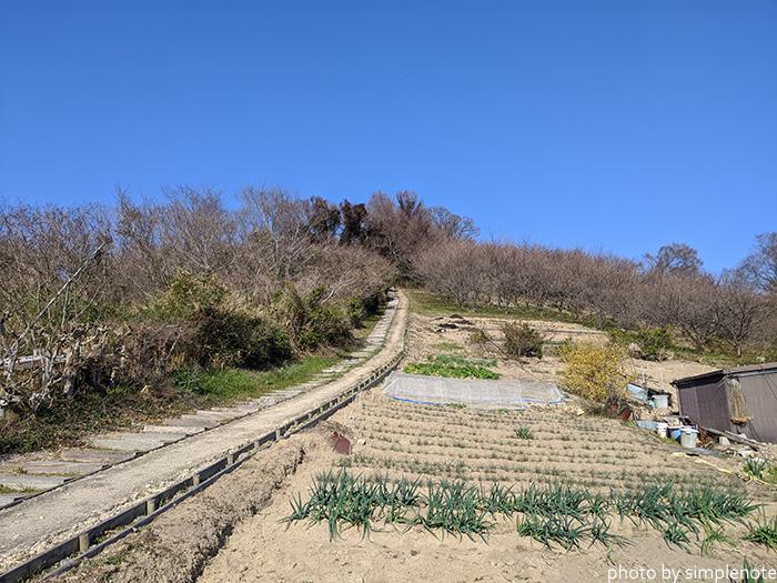三郎島の東側の展望台に続く道